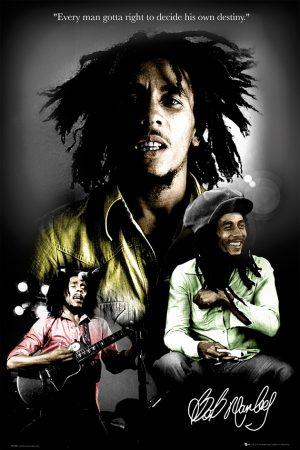 Bob Marley - Destiny