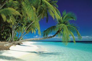 Maldives - Beach