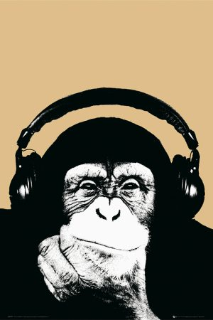 Monkey - Steez Monkee