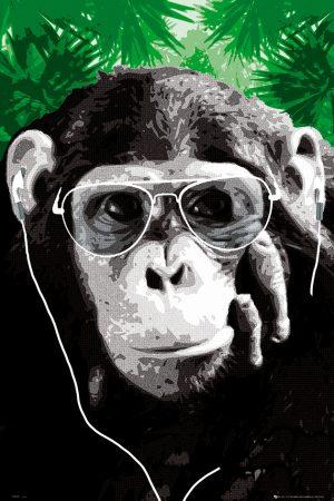 Monkey - Shades