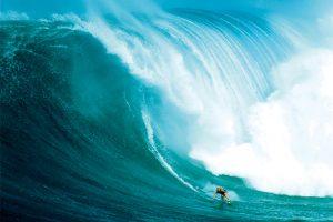 Surf - Wave Rider