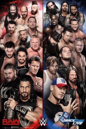 WWE - Smackdown vs Raw